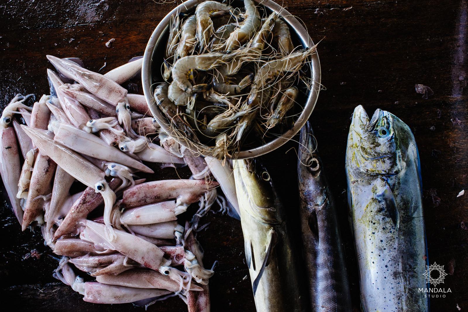 sri lanka cejlon podroz ryby